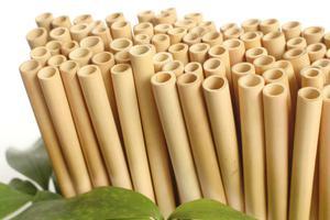 Bạn cần mua ống hút tre ở Hà Nội giá rẻ, chất lượng?